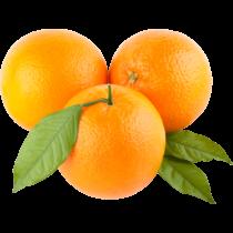 Narancs 4-5-ös lédig
